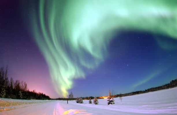International Year Of Light In Nature